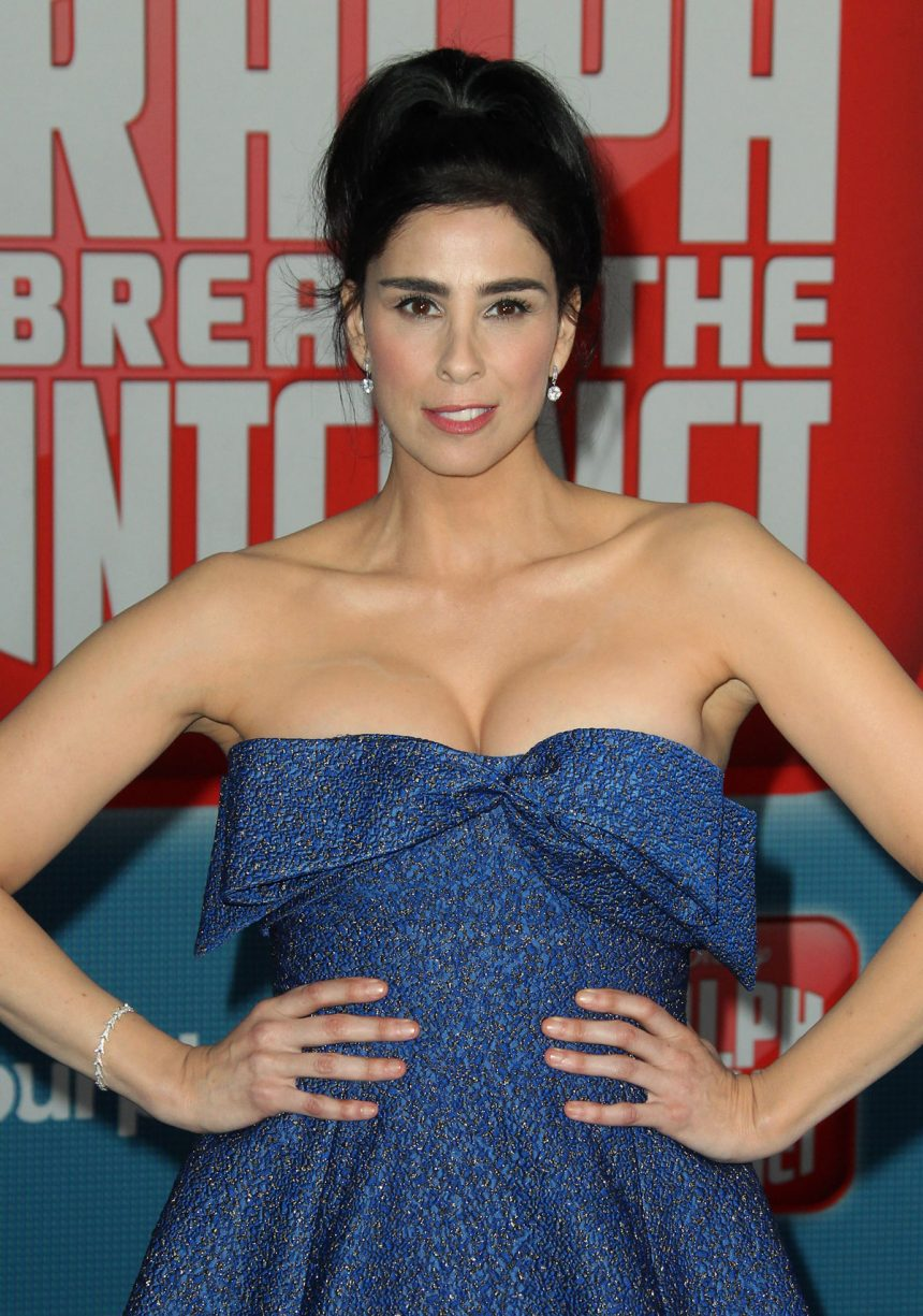 2019 Sarah Silverman nudes (48 photo), Tits, Is a cute, Instagram, braless 2017