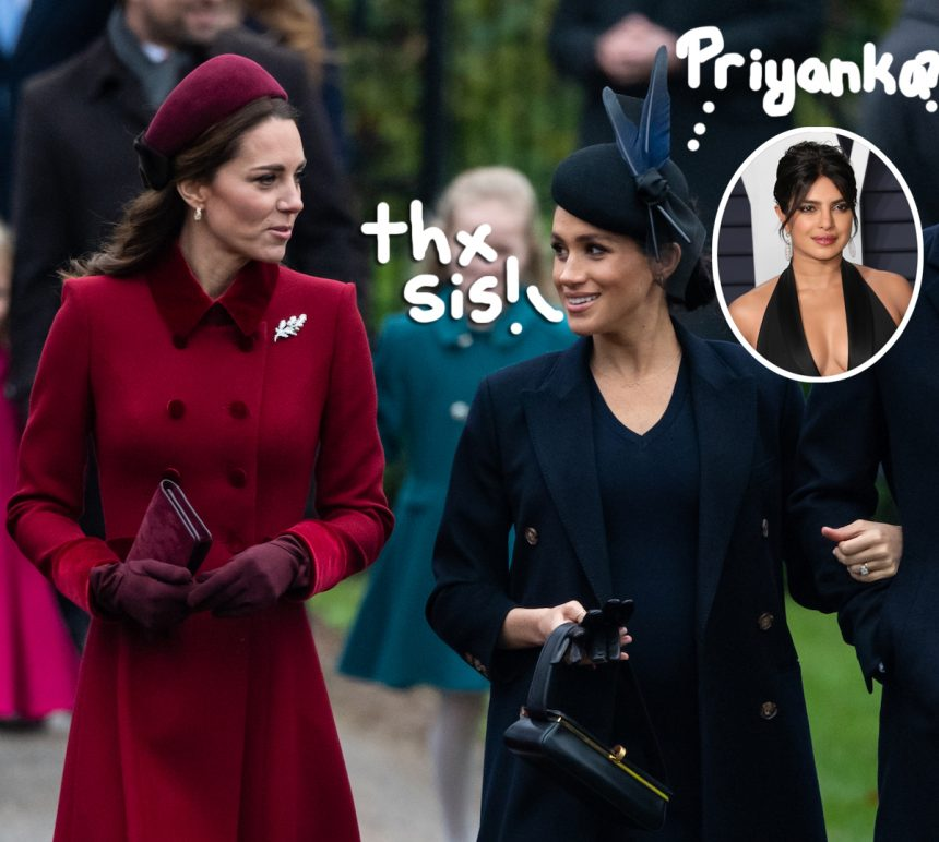 Has Priyanka Chopra and Meghan Markle's friendship hit rock bottom?