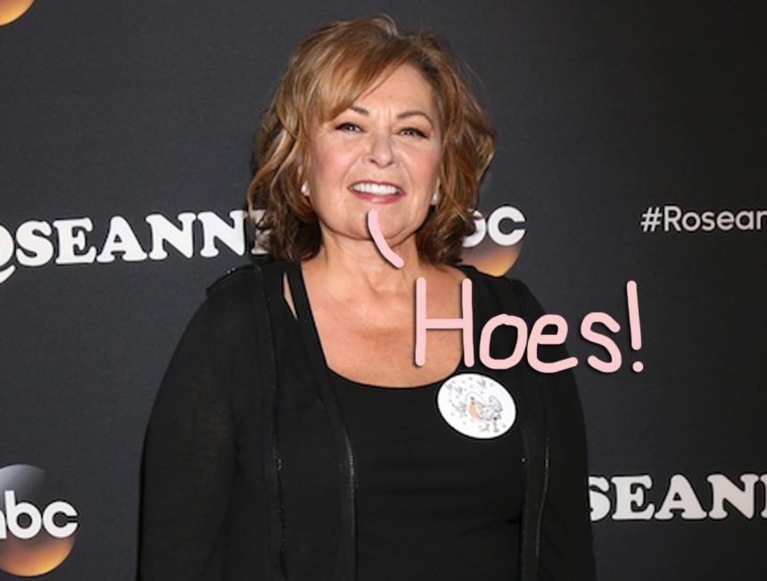 In interview, Roseanne Barr calls #MeToo founders 'hos'