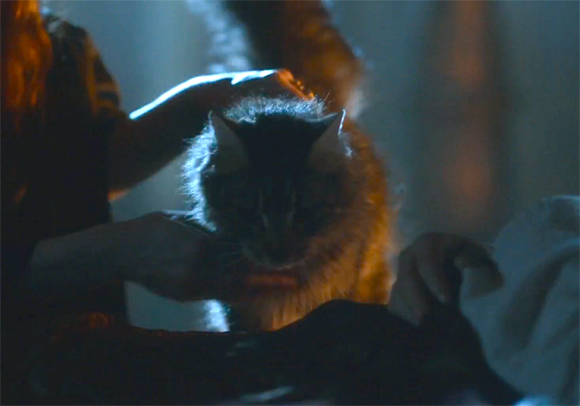 Game Of Thrones Ser Pounce Death