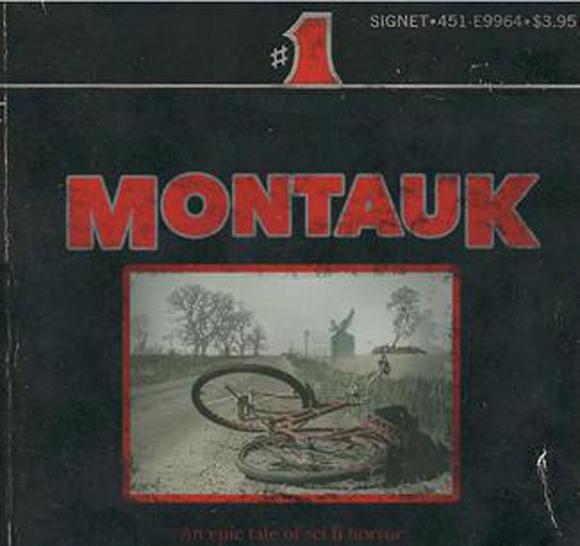Stranger Things original title Montauk pitch