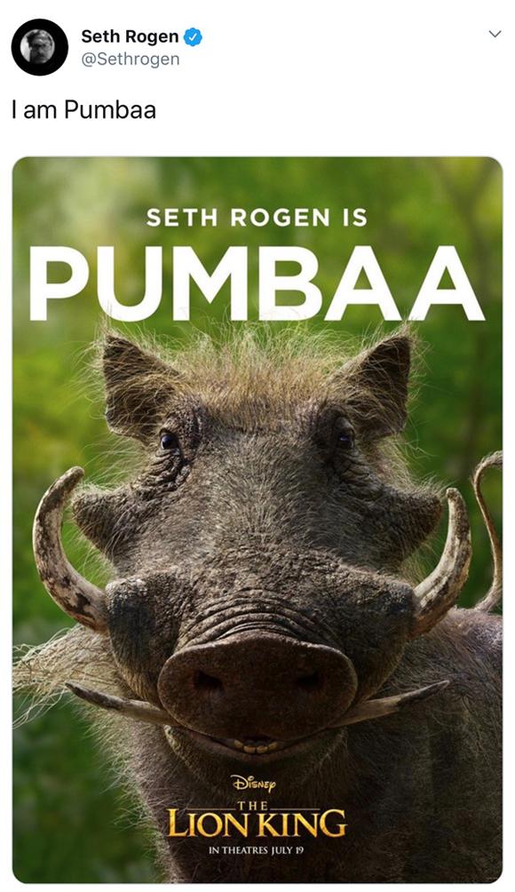 Lion Kings New Pumbaa Poster Is Giving People Nightmares