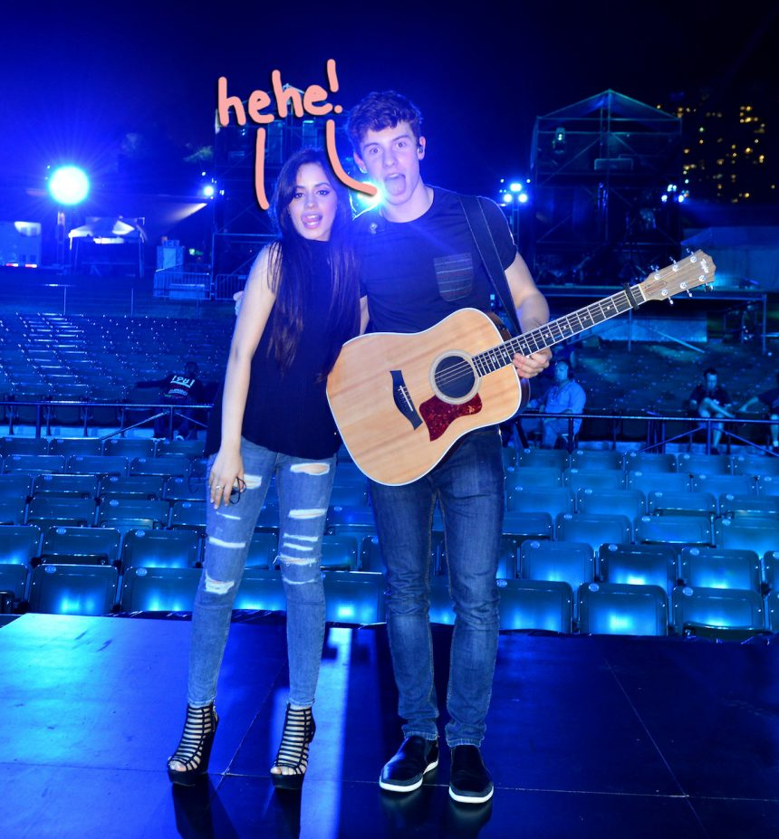 Shawn Mendes + Camila Cabello Have 'Really Fallen' For Each Other
