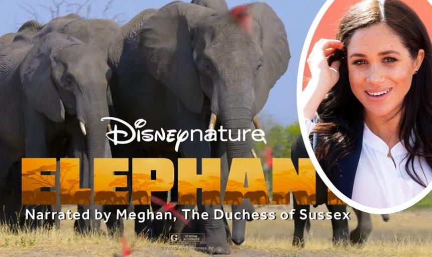 Meghan Markle Disney Elephant Documentary Reviews