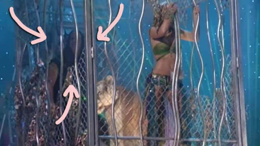 Britney Spears' hit 2001 MTV VMAs performance included a special appearance by Tiger King star Doc Antle!