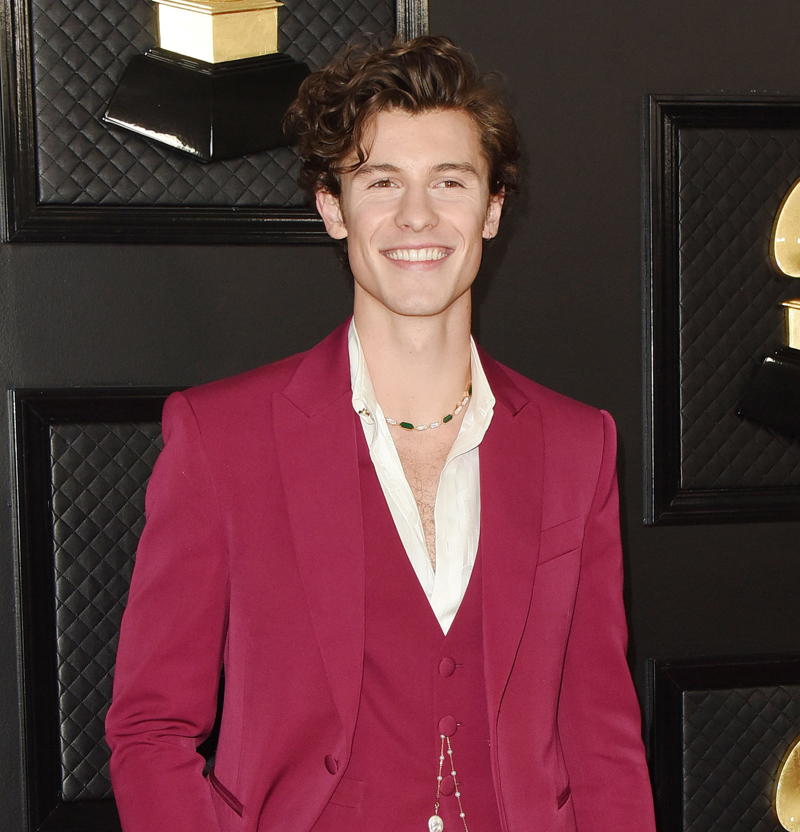 Shawn Mendes helps fight coronavirus