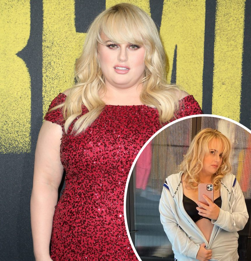 Rebel Wilson Says She Was 'Paid A Lot Of Money To Be ...