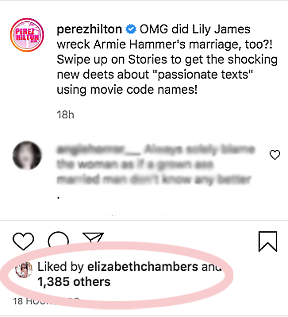 OMG! Elizabeth Chambers Seemingly Confirms Armie Hammer & Lily James  Exchanged 'Passionate Texts'! – Burada Biliyorum