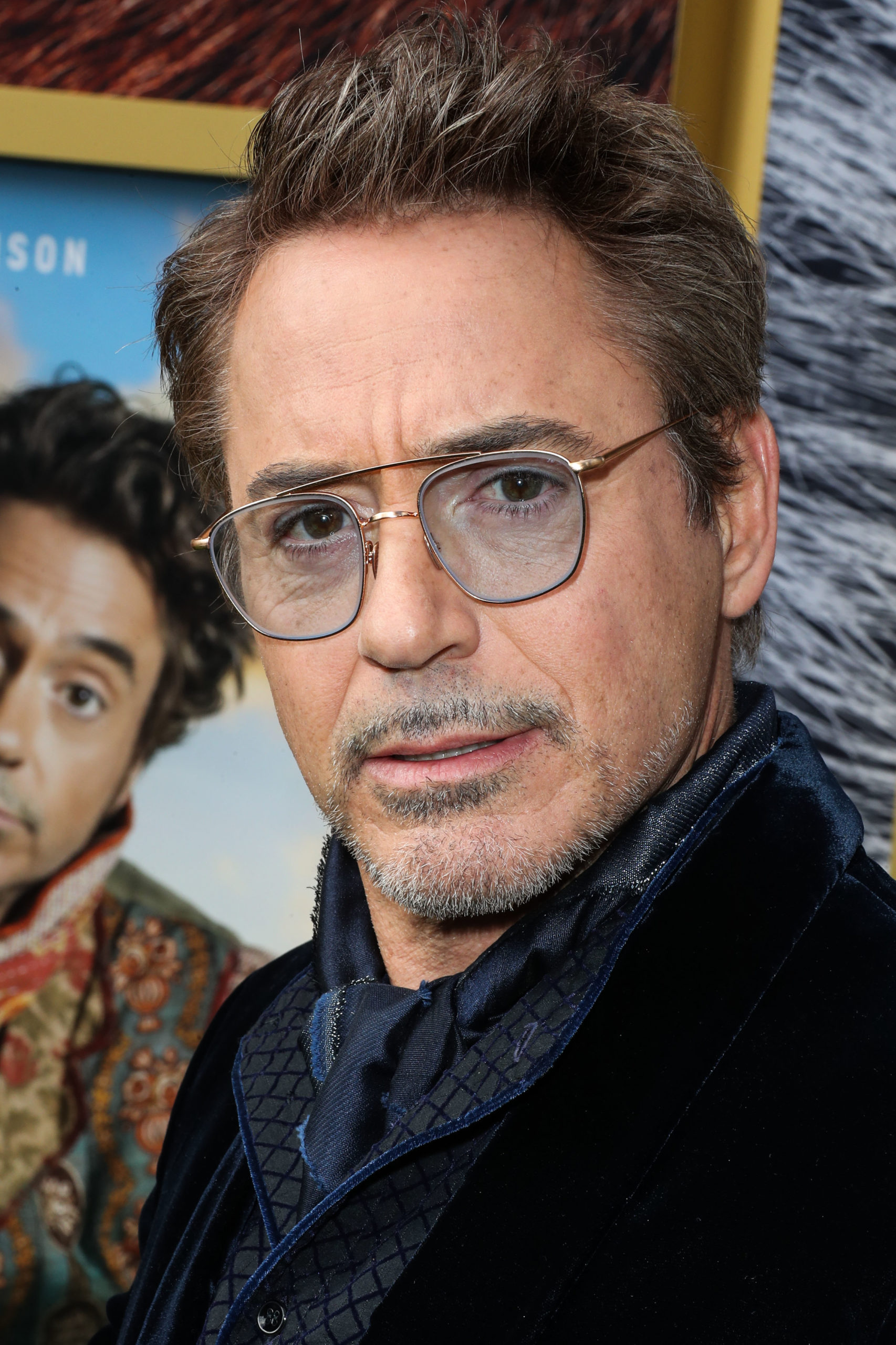 Robert Downey Jr. Was Arrested And Later Pardoned
