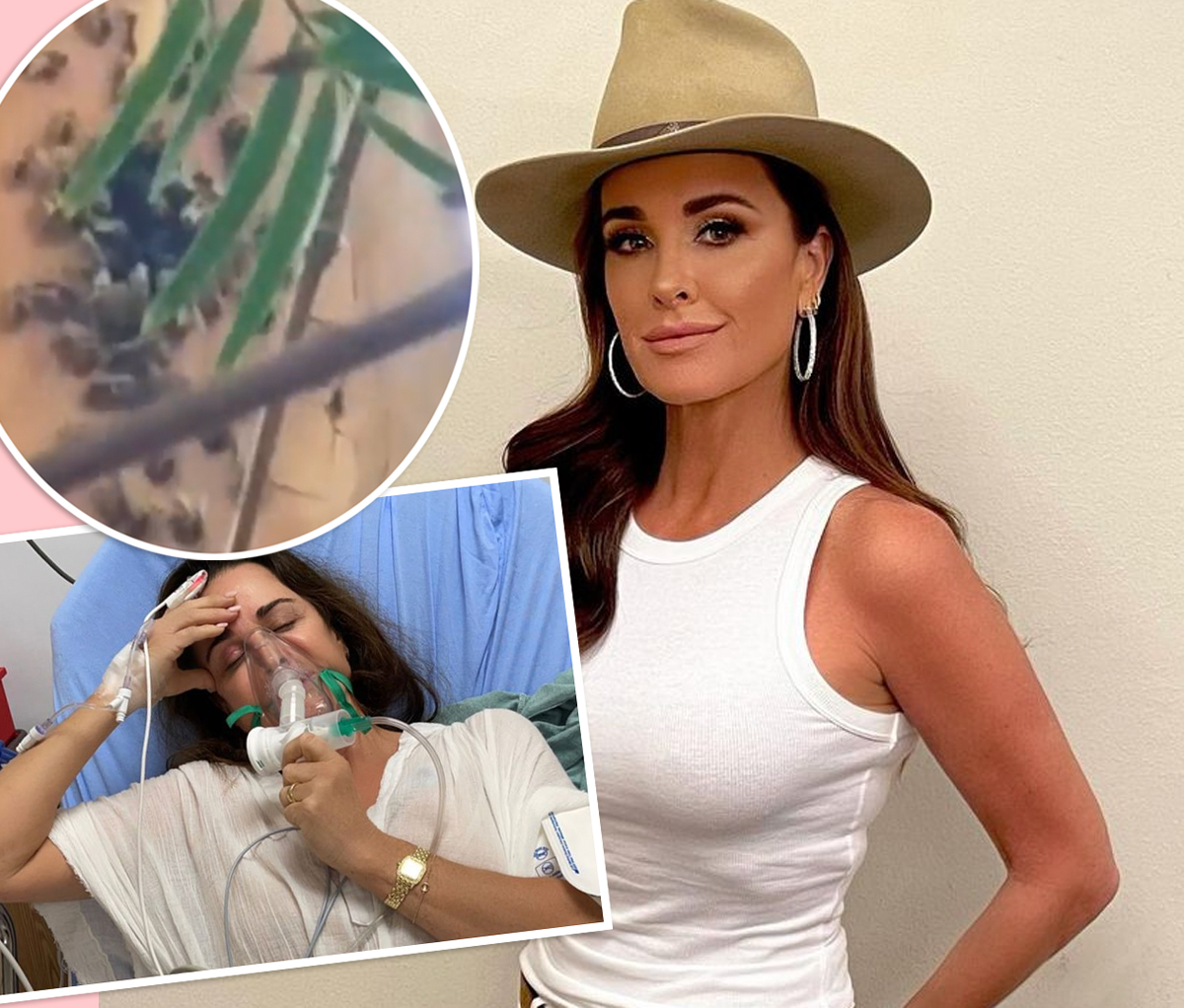 SO SCARY! RHOBH Star Kyle Richards Hospitalized After Accidentally Walking Into A Beehive!